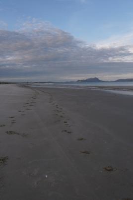 Morning beach walks