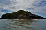 Baby seal island.