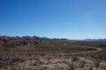 High desert life.